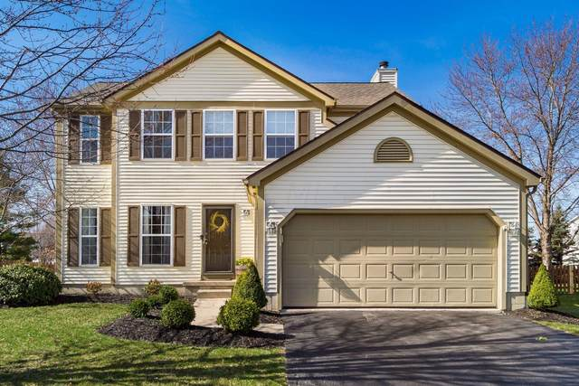 8664 Kirkland Drive, Lewis Center, OH 43035 (MLS #221008347) :: Bella Realty Group