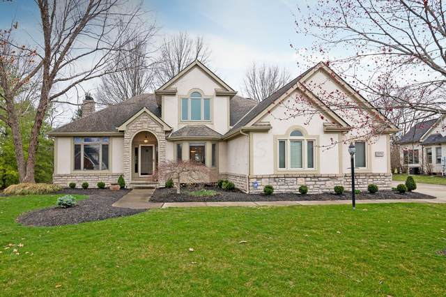 8559 Fallgold Lane, Westerville, OH 43082 (MLS #221008745) :: MORE Ohio