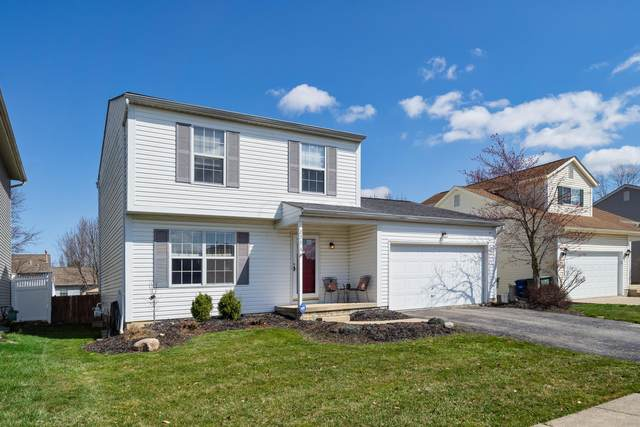 5354 Sawatch Drive, Columbus, OH 43228 (MLS #221008799) :: RE/MAX ONE
