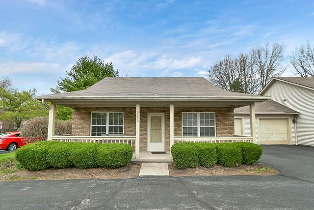 6662 Imperial Rose Place #6662, Reynoldsburg, OH 43068 (MLS #221008965) :: MORE Ohio