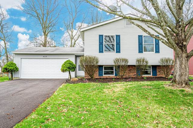 4025 Blueberry Hollow Road, Columbus, OH 43230 (MLS #221008996) :: The Raines Group