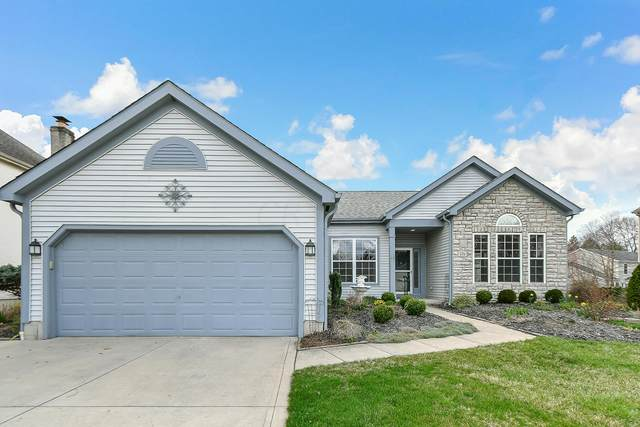 171 Cady Court, Blacklick, OH 43004 (MLS #221009080) :: RE/MAX ONE