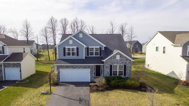 408 Red Stag Road, Delaware, OH 43015 (MLS #221009117) :: Bella Realty Group