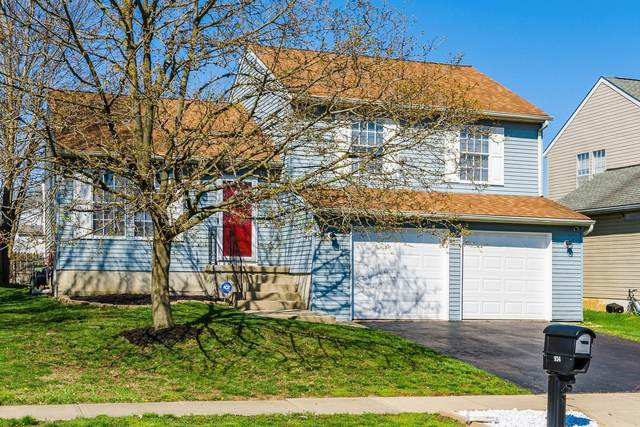 934 Cherry Bud Drive, Columbus, OH 43228 (MLS #221009375) :: 3 Degrees Realty