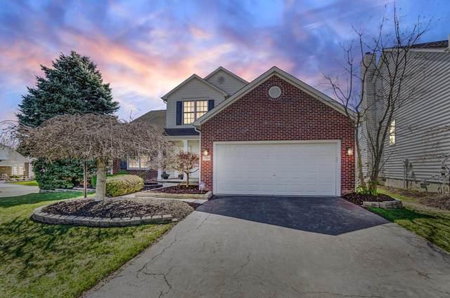 7384 Lavender Lane, Lewis Center, OH 43035 (MLS #221009407) :: HergGroup Central Ohio