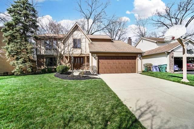 8895 Shrockton Street, Powell, OH 43065 (MLS #221009408) :: MORE Ohio