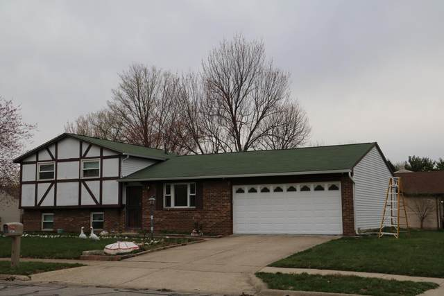 5720 Ponderosa Drive, Columbus, OH 43231 (MLS #221009442) :: RE/MAX Metro Plus