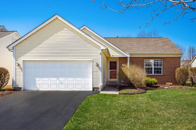 5555 Falco Drive, Westerville, OH 43081 (MLS #221009467) :: MORE Ohio