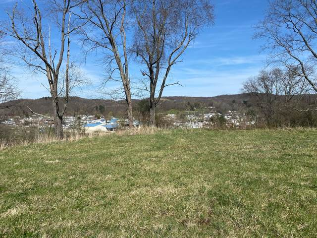 0 Strous Road Lot 1, Laurelville, OH 43135 (MLS #221009492) :: RE/MAX ONE