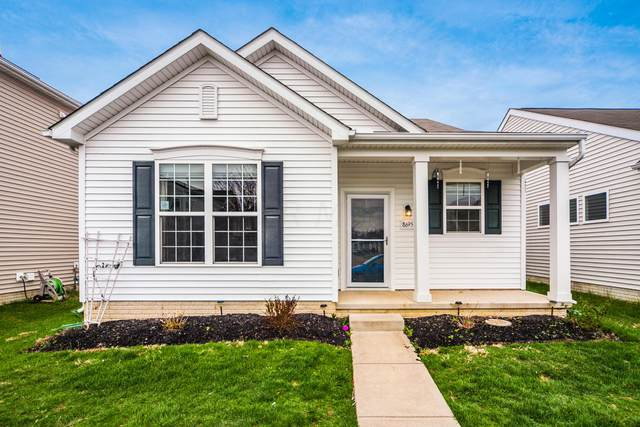 8695 Arrowtip Lane, Lewis Center, OH 43035 (MLS #221009644) :: Shannon Grimm & Partners Team
