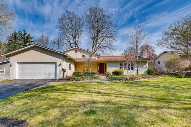 314 Blandford Drive, Worthington, OH 43085 (MLS #221009881) :: RE/MAX Metro Plus