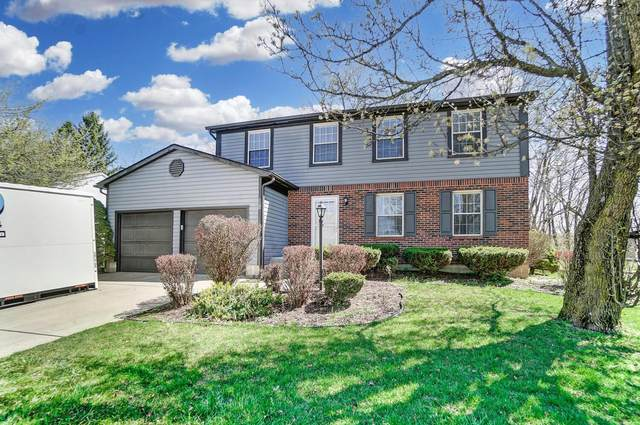 442 Rambling Brook Drive, Pickerington, OH 43147 (MLS #221009934) :: MORE Ohio