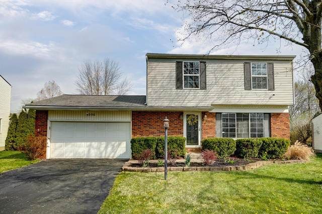 5596 Fescue Drive, Hilliard, OH 43026 (MLS #221010085) :: Exp Realty
