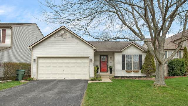 748 Windy Hill Lane, Galloway, OH 43119 (MLS #221010091) :: Bella Realty Group