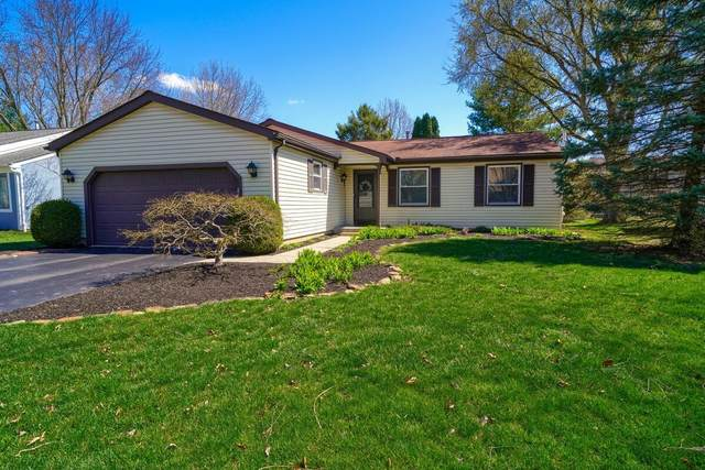 8390 Nuthatch Way, Columbus, OH 43235 (MLS #221010093) :: Core Ohio Realty Advisors