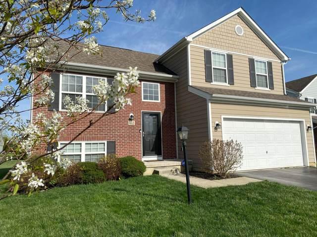 812 Brevard Circle, Pickerington, OH 43147 (MLS #221010749) :: Core Ohio Realty Advisors
