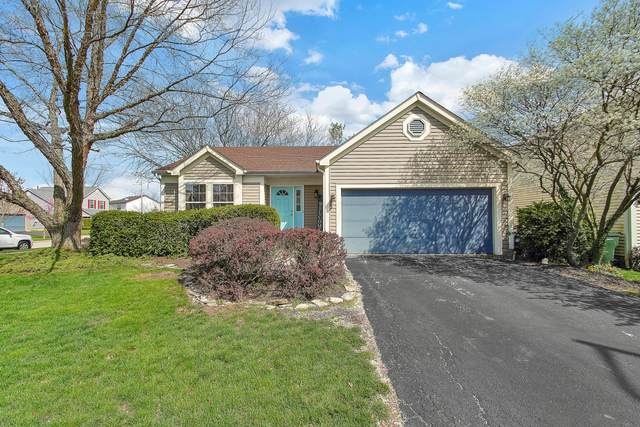 1122 Wexford Green Boulevard, Columbus, OH 43228 (MLS #221010853) :: Core Ohio Realty Advisors