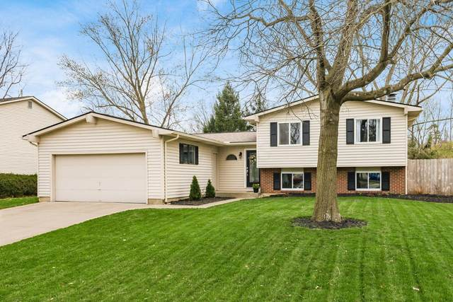 1119 Belle Meade Place, Westerville, OH 43081 (MLS #221011013) :: Jamie Maze Real Estate Group