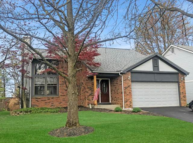 5675 Longford Drive, Dublin, OH 43016 (MLS #221011128) :: Jamie Maze Real Estate Group