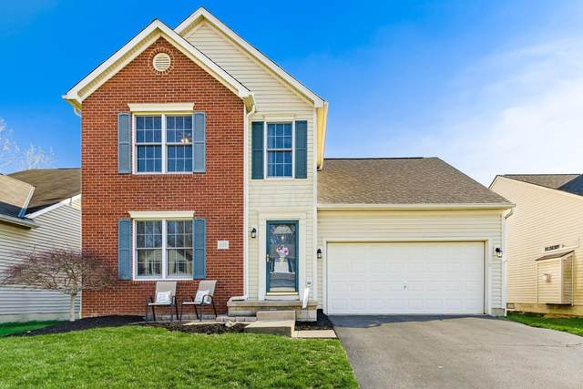 339 Amber Wood Way, Lewis Center, OH 43035 (MLS #221011154) :: RE/MAX Metro Plus