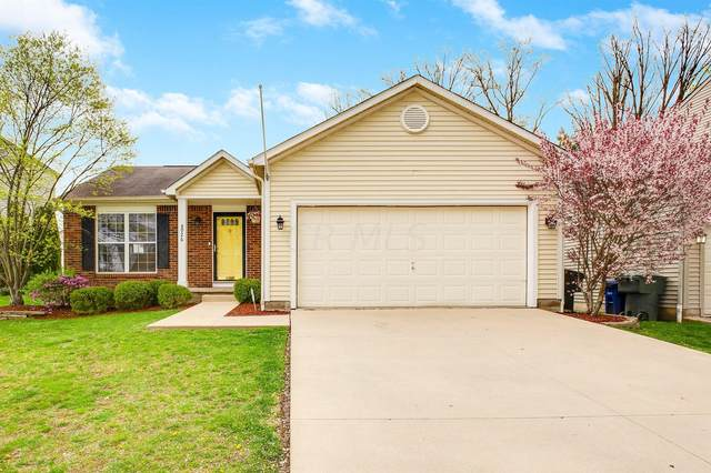 8926 Garrett Street, Lewis Center, OH 43035 (MLS #221011196) :: RE/MAX Metro Plus