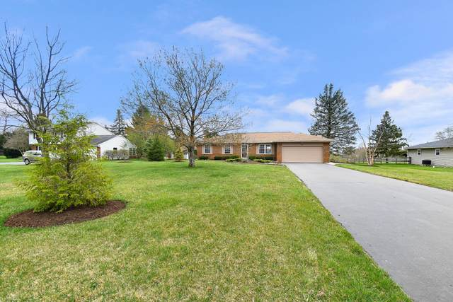 7967 Walnut Street, New Albany, OH 43054 (MLS #221011206) :: Ackermann Team