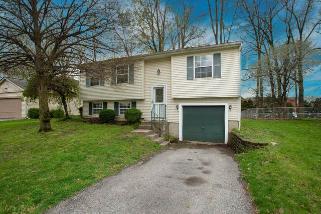 4107 Beauty Rose Avenue, Westerville, OH 43081 (MLS #221011220) :: RE/MAX Metro Plus