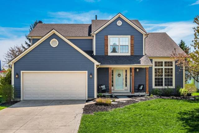 842 Monarda Place, Reynoldsburg, OH 43068 (MLS #221011233) :: RE/MAX ONE