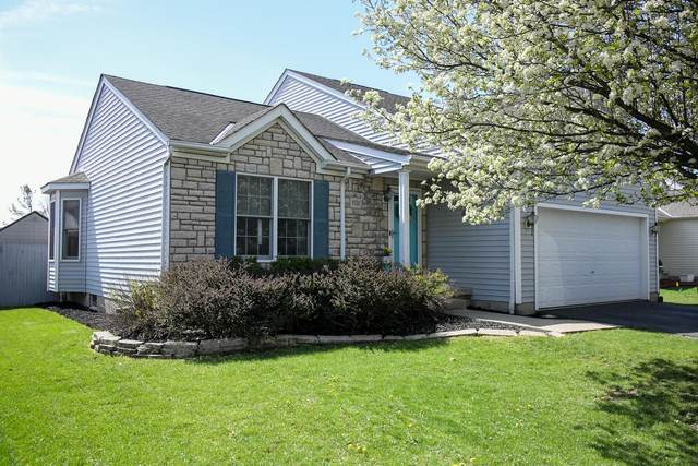 1221 Valley Drive, Marysville, OH 43040 (MLS #221011266) :: Jamie Maze Real Estate Group
