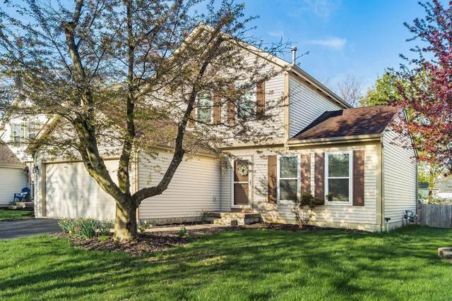 2403 Mills Fall Drive, Hilliard, OH 43026 (MLS #221011279) :: The Gale Group