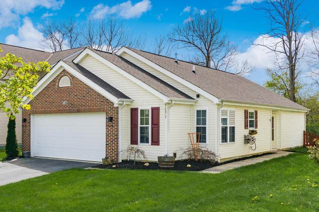 6877 Riding Trail Drive, Canal Winchester, OH 43110 (MLS #221011297) :: MORE Ohio