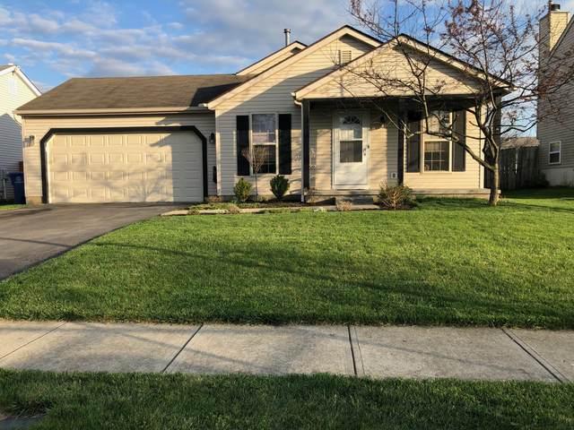 3155 El Greco Drive, Columbus, OH 43204 (MLS #221011443) :: Core Ohio Realty Advisors