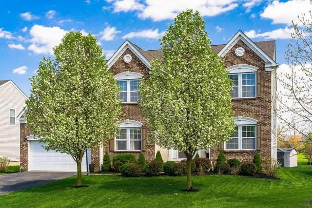 4295 Orangeberry Drive, Grove City, OH 43123 (MLS #221011494) :: Bella Realty Group