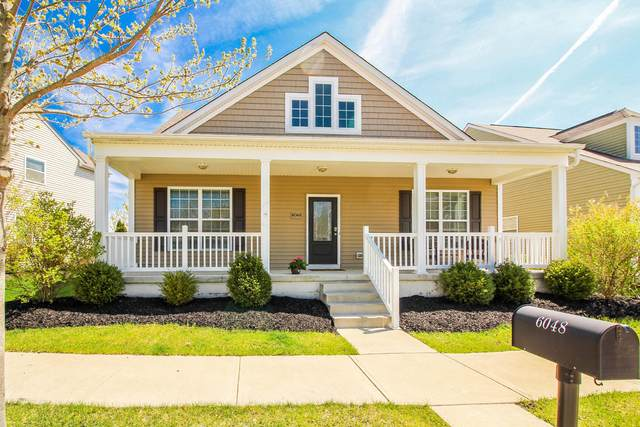 6048 Shreven Drive, Westerville, OH 43081 (MLS #221011572) :: Exp Realty