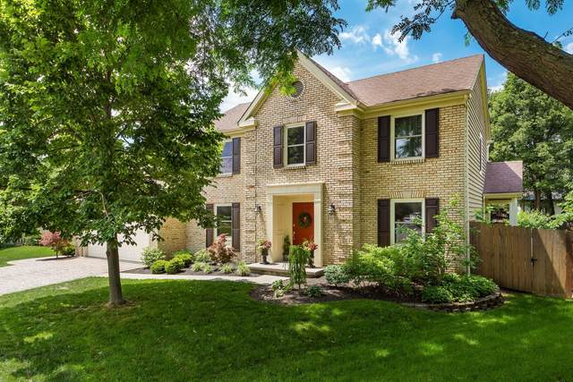 337 Leighton Court, Westerville, OH 43082 (MLS #221011581) :: Exp Realty