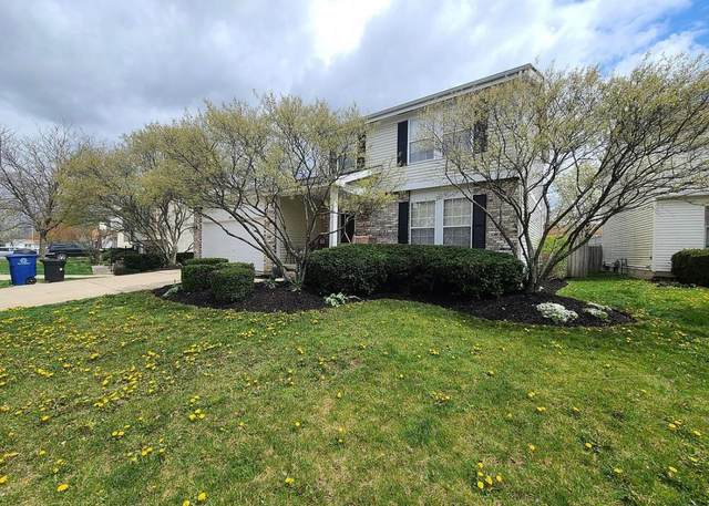 882 Riggsby Road, Galloway, OH 43119 (MLS #221011634) :: CARLETON REALTY