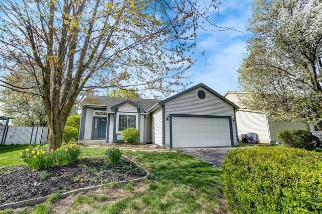 5377 Bonner Drive, Hilliard, OH 43026 (MLS #221011673) :: Greg & Desiree Goodrich | Brokered by Exp