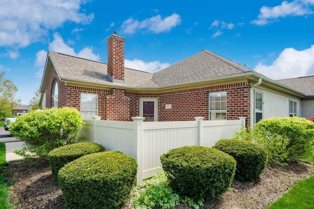 8517 Stonewoods Lane, Powell, OH 43065 (MLS #221011684) :: Jamie Maze Real Estate Group