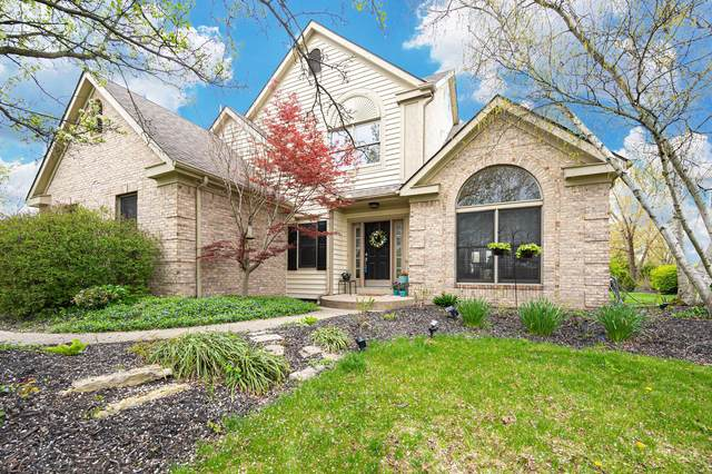 5567 Long Cove Court, Westerville, OH 43082 (MLS #221011715) :: Exp Realty