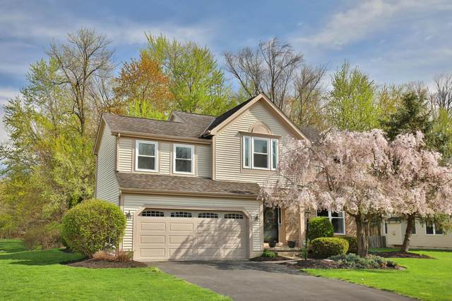 6529 Margaret Drive, Westerville, OH 43082 (MLS #221011744) :: Jamie Maze Real Estate Group