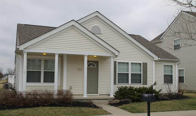 6001 Mealla Road, Westerville, OH 43081 (MLS #221011749) :: CARLETON REALTY