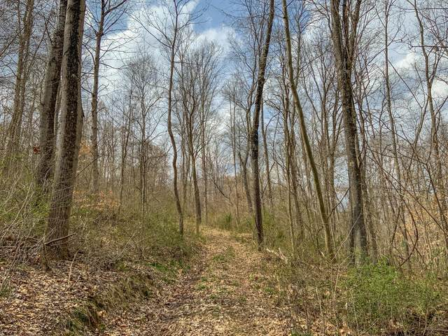 0 Goose Creek Road, McArthur, OH 45651 (MLS #221011840) :: CARLETON REALTY