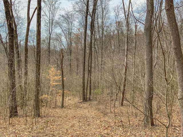 0 Goose Creek Road, McArthur, OH 45651 (MLS #221011843) :: Jamie Maze Real Estate Group