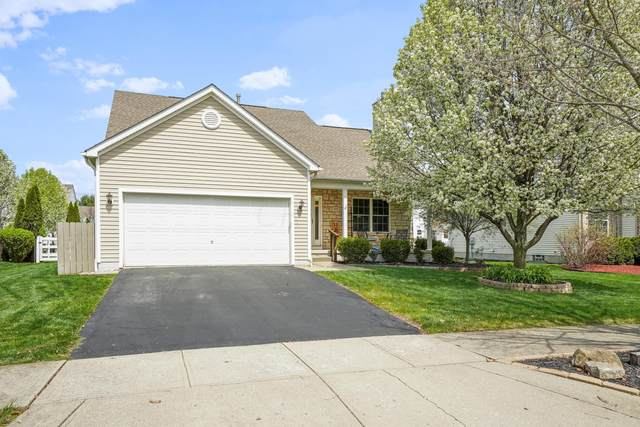 371 Cherry Leaf Road, Delaware, OH 43015 (MLS #221011870) :: RE/MAX Metro Plus