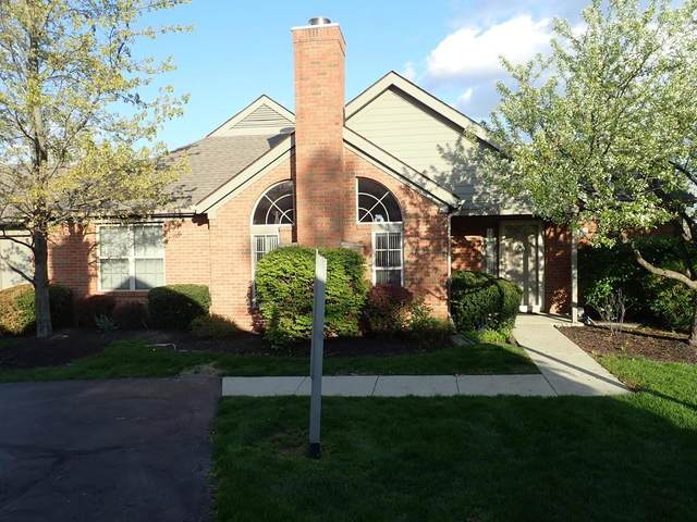 2425 Sportsman Drive, Grove City, OH 43123 (MLS #221011874) :: Exp Realty