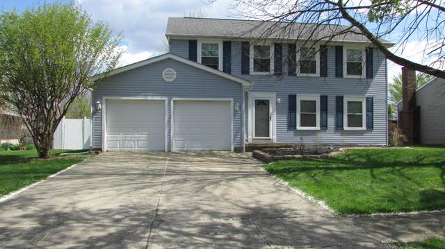3704 Holly Street, Grove City, OH 43123 (MLS #221012024) :: Exp Realty
