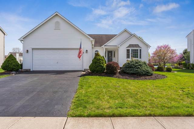6253 Hilmar Drive, Westerville, OH 43082 (MLS #221012083) :: Greg & Desiree Goodrich | Brokered by Exp