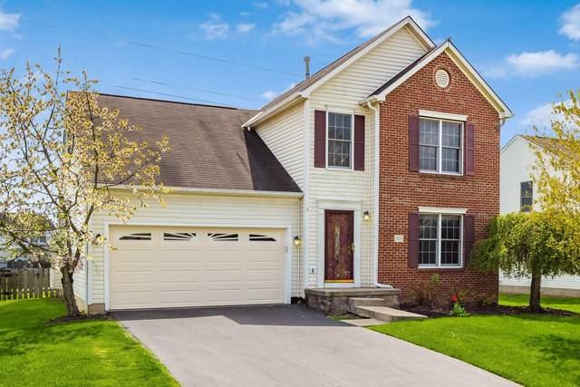 9165 Ridgeline Drive, Reynoldsburg, OH 43068 (MLS #221012123) :: MORE Ohio