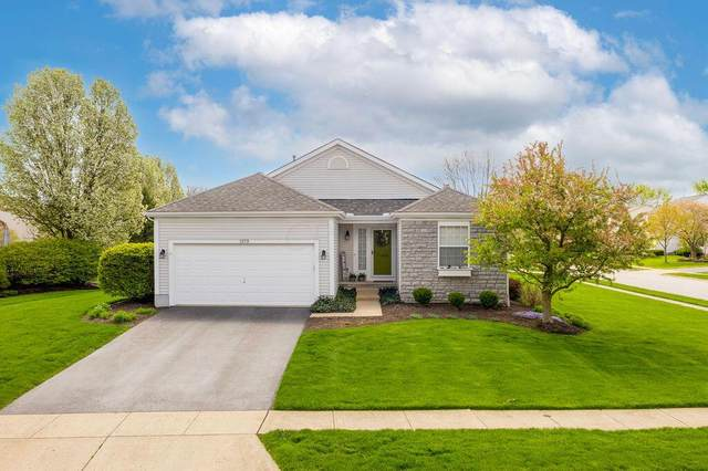 1373 Four Star Drive E, Galloway, OH 43119 (MLS #221012142) :: MORE Ohio
