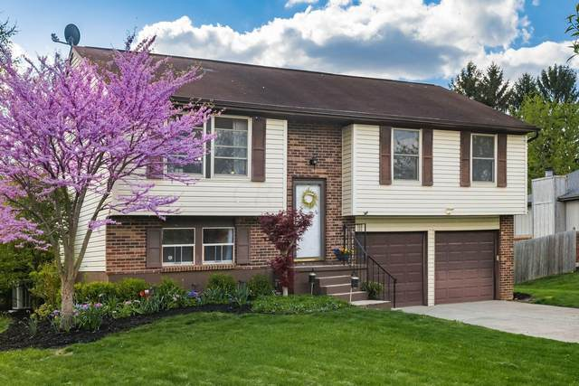 4289 Mary Jane Place, Grove City, OH 43123 (MLS #221012167) :: Exp Realty